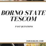 Borno State TESCOM Recruitment Test Past Questions