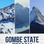 How To Download The Gombe State SUBEB Past Questions