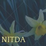 NITDA Scholarship Past Questions And Answers