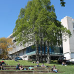 Excellence Scholarships At The University of Waikato