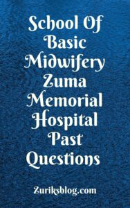 School Of Basic Midwifery Zuma Memorial Hospital Past Questions