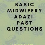 School Of Basic Midwifery Adazi Past Questions Free Download