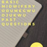 School Of Basic Midwifery Odumegwu Ojukwu Past Questions