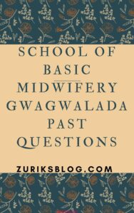 School Of Basic Midwifery Gwagwalada Past Questions