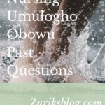School Of Nursing Umulogho Obowu Past Questions Free Download