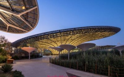 UAE federal govt employees granted 6 days leave to visit Expo 2020